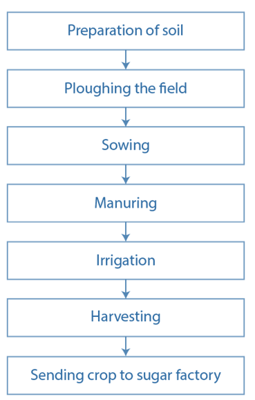 NCERT Solutions for Class 8 Science Chapter 1 Crop Production and Management image 2