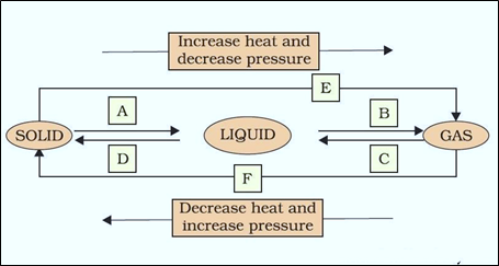 NCERT Solutions for Class 9 Science Chapter 1 Matter in Our Surrounding image 1