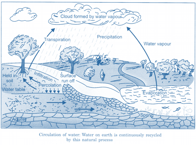 NCERT Solutions for Class 6 Science Chapter 14 Water image 2